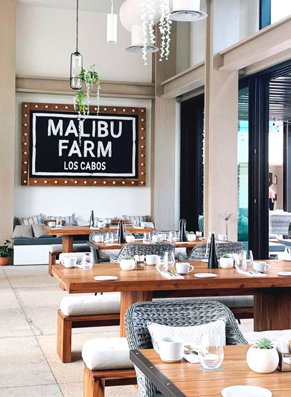 Malibu Farm at Nobu Hotel Los Cabos